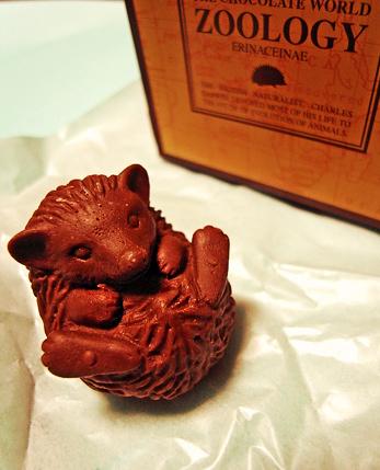 リアルハリネズミチョコレート